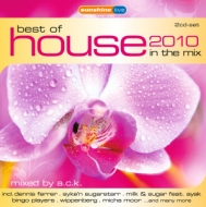 Diverse - Best Of House 2010 In The Mix
