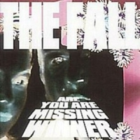 Fall,The - Are You Are Missing Winner (4 CD Expanded Digipak)